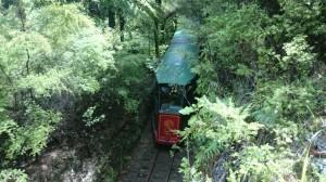 Så här såg det ut där tåget körde.